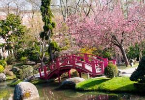sortie jardin japonais toulouse